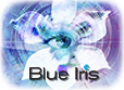 Blue Iris : Tested IP Cameras